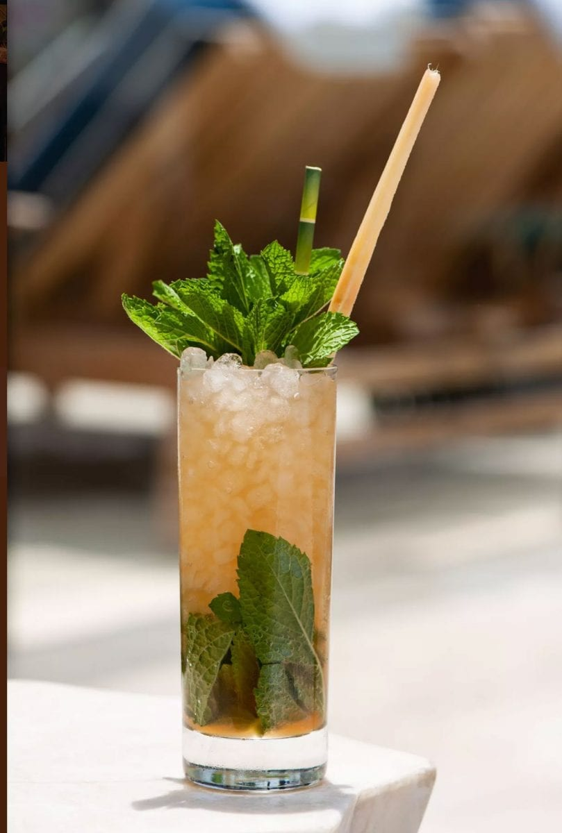 tropical cocktail with highball glass and large mint leaves