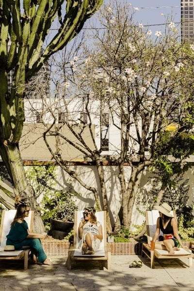 women sitting outdoors on lounge chairs under a cactus and cherry blossom tree